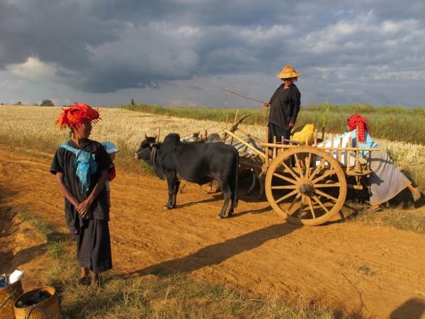 IMG_Pa-O women Myanmar