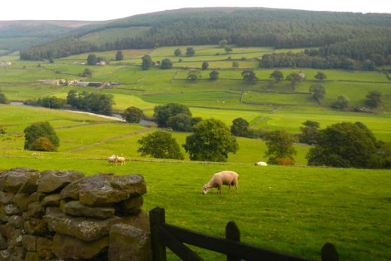the Yorkshire Dales - even more beautiful than in the TV show