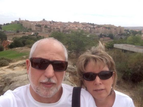 with the walled city of Ávila in the background