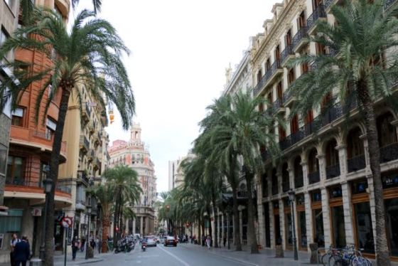 beautiful palm-lined streets