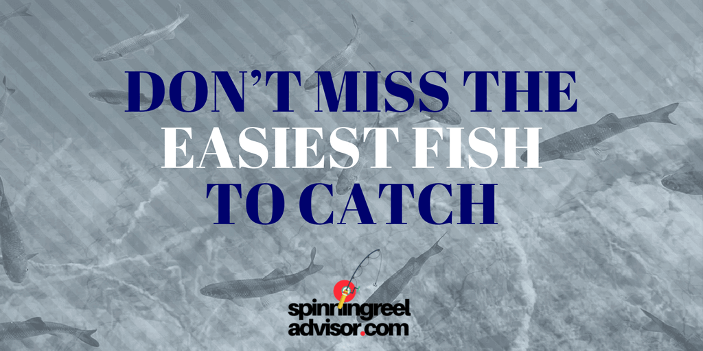 easiest fish to catch