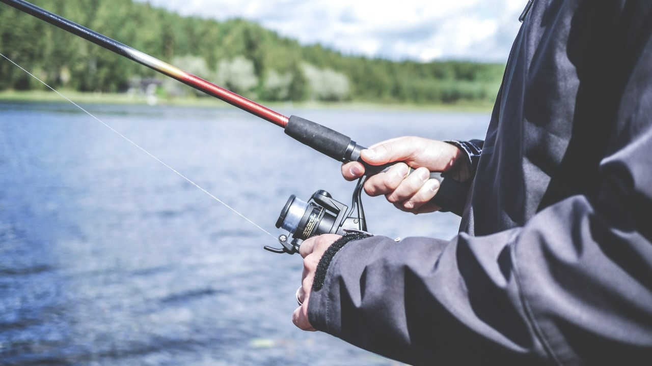 Best spinning rods for trout