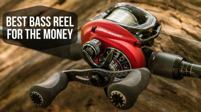 Best Bass Reel for the Money