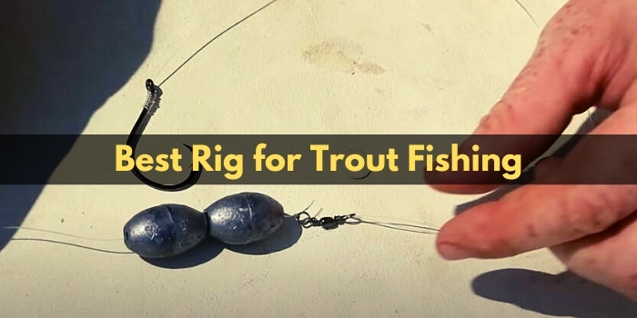 best rig for trout fishing