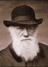 Charles Darwin. 1880