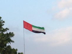 United Arab Emirates country flag.