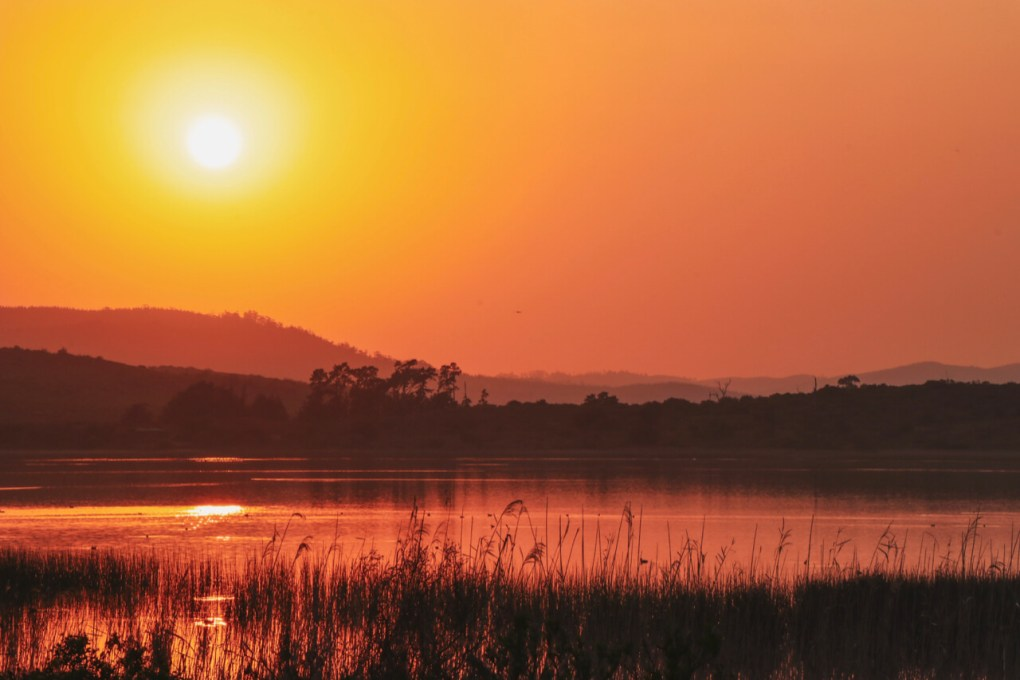 The sun is rising over a lake - the image is golden red, with hills in the distance and the reeds in the foreground.
