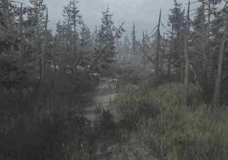 Swamp-Map-v22.03-4