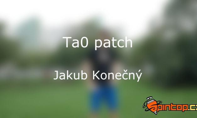 Ta0's black belt patch video application by J. Konečný