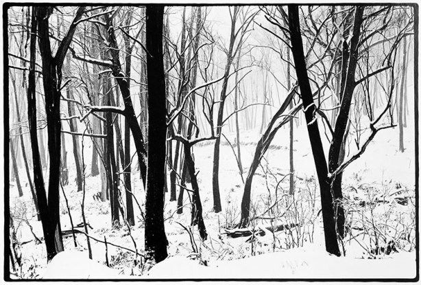 """U Tony Lockerbie """"Fire And Ice"""" Gelatin Silver Print 37 x 56 cm"""