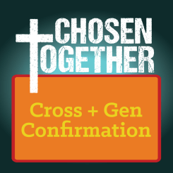 Cross+Gen Confirmation