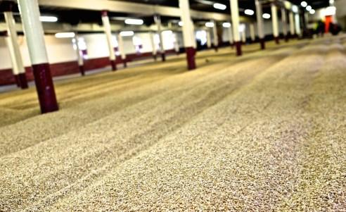 balvenie malting floor