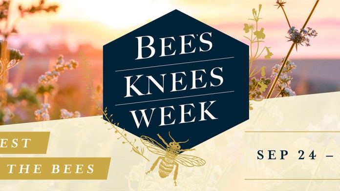 Bar Hill Bee's Knees Week