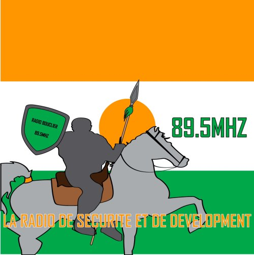 Radio Bouclier will provide accurate and timely information to the community about Boko Haram activities and other local security issues