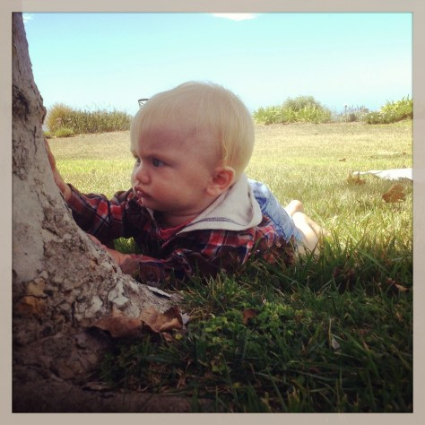 Baby connecting with tree spirit
