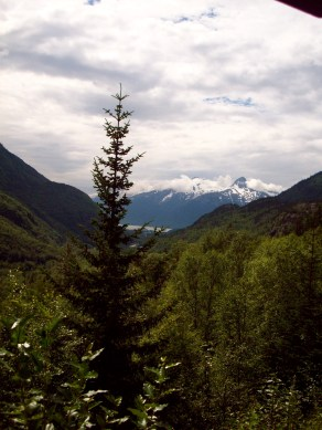 View from the train in Skagway White Pass Railway in Alaska