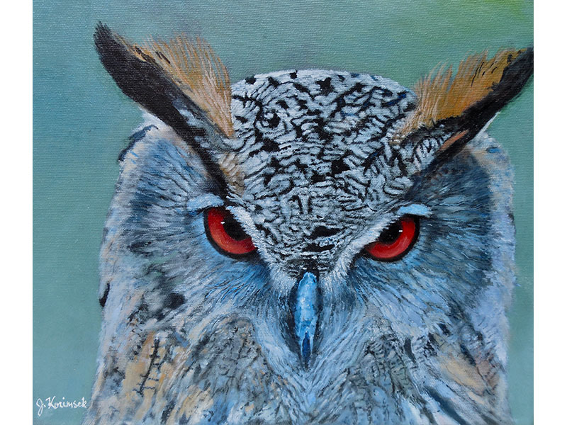 "Horned Owl 12""x12"" by Josie Korimsek"