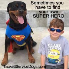 Team Jackson Family.Patriotic Service Dog Foundation