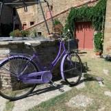 Vintage Bicycle_Spirito Toscano 2