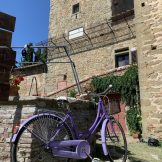 Vintage Bicycle_Spirito Toscano 9