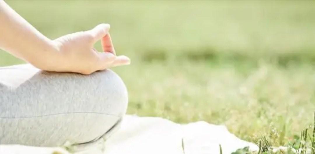 座禅 瞑想 自然 芝生