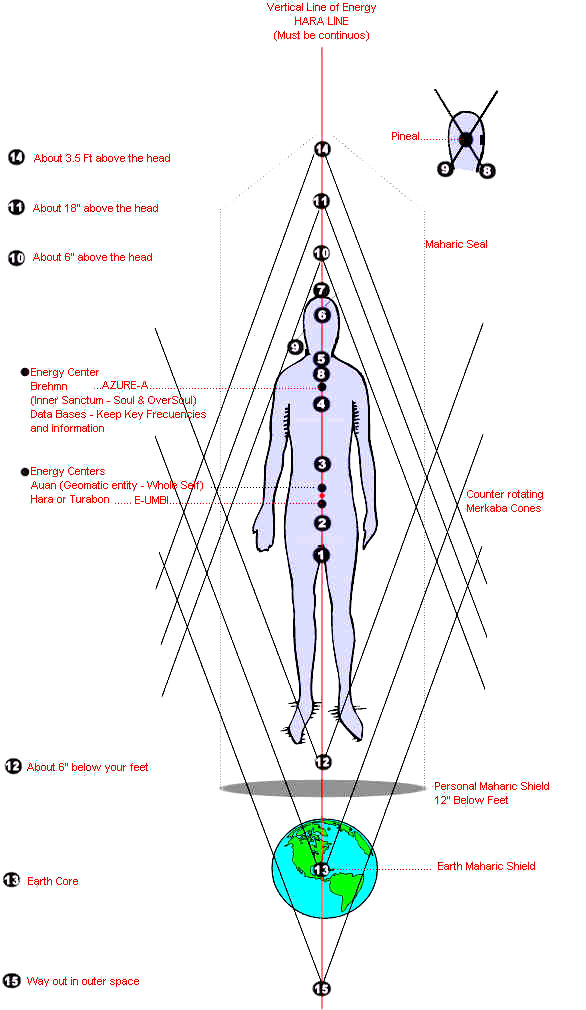 the 15 chakras