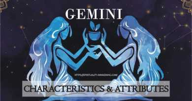gemini rising sign