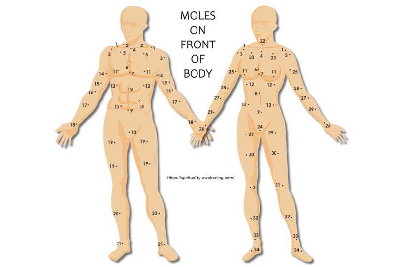 moles on body front