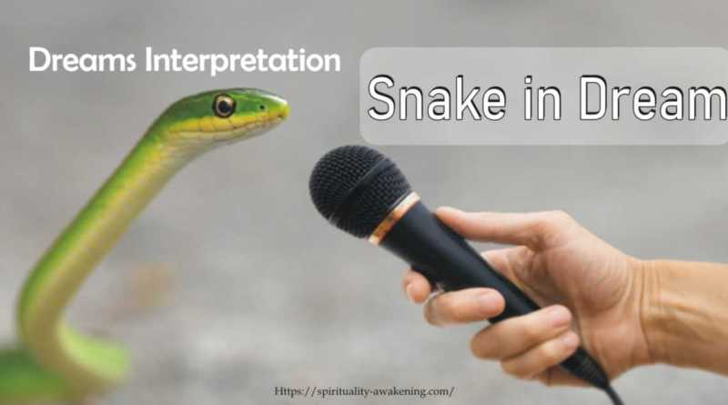 snake in dream meaning