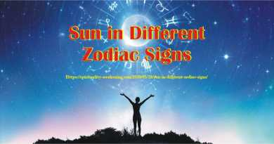 Sun in Different Zodiac Signs