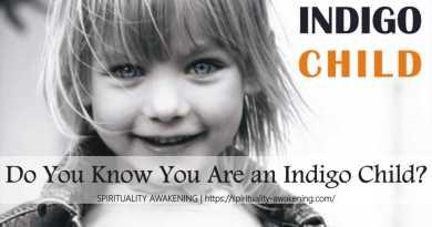 what is indigo child