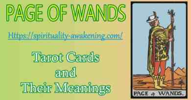 page of wands tarot card -- page of wands love