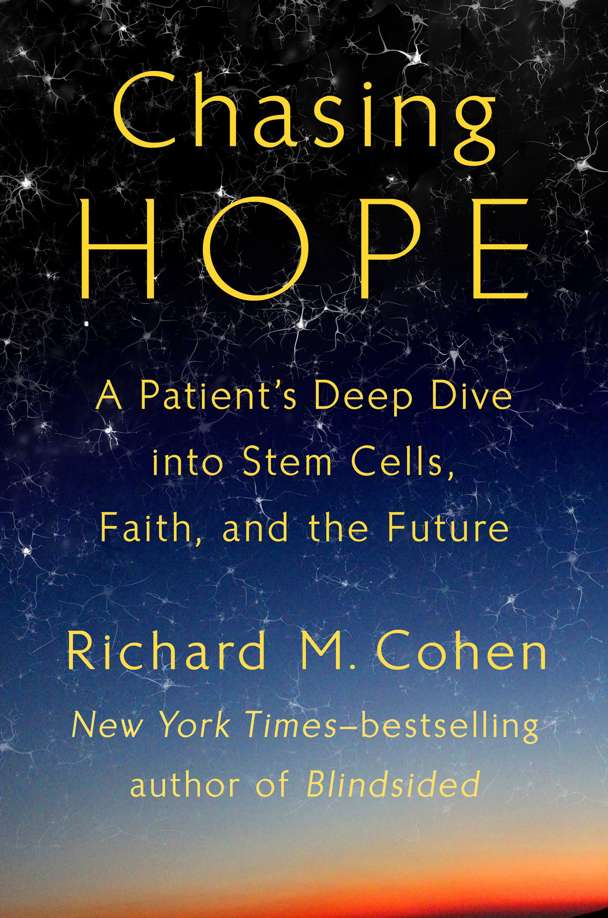 Book Review Chasing Hope