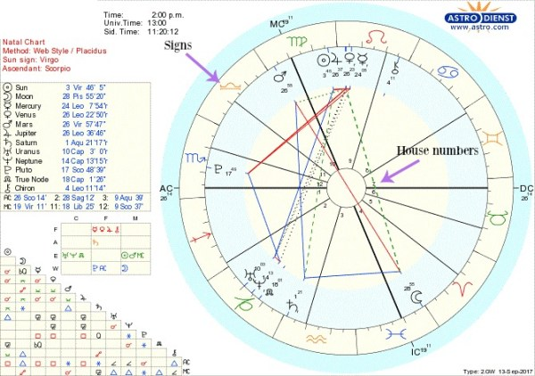 houses in natal chart