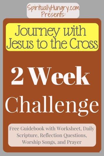 Understanding Jesus' Crucifixion   Spiritual Practices For Easter   Holy Week Disciplines