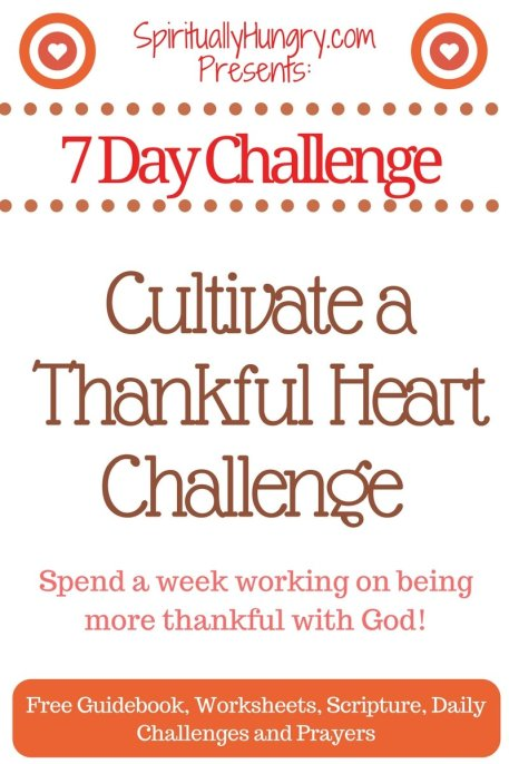 Thankfulness | Thankful For What You Have | Prayerful Thanks