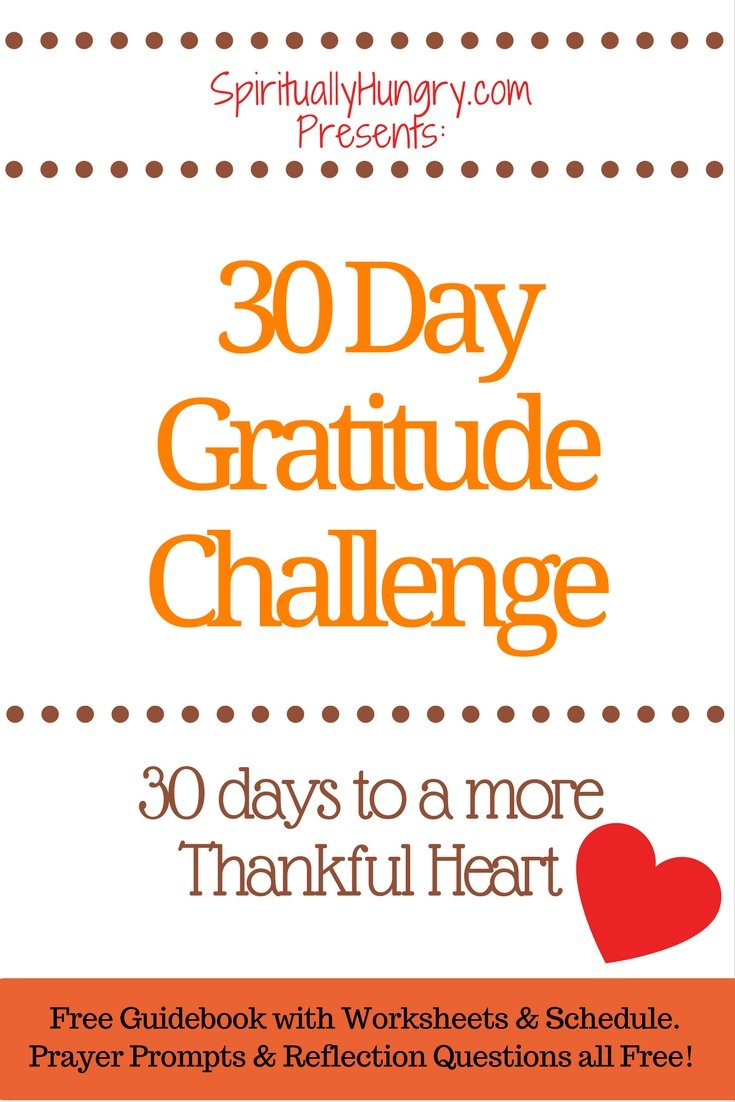 Looking to embrace a little more thankfulness in your life? Why not try this 30 day Challenge that helps you become more grateful through God's help!
