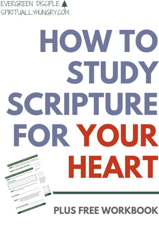 How To Practice Lectio Divina   Spiritual Disciplines   Bible Study Methods