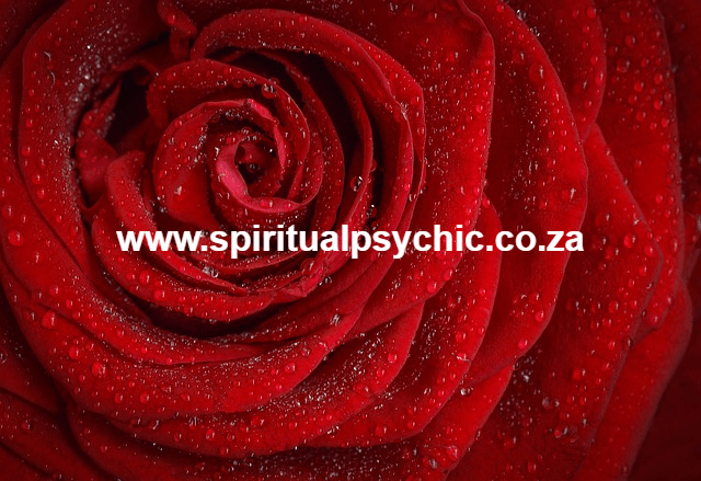 love spell caster Archives - Spiritual healing and Spells Casting