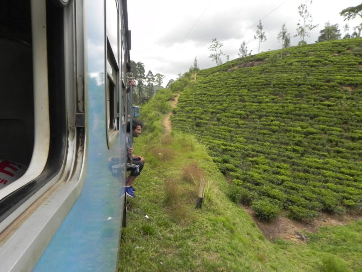 列車から茶畑を見るスリランカ人