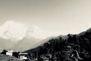 山中の眺め