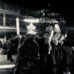 ペラヘラ祭りの象