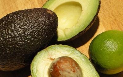Avokado: super frukt som gir helsegevinst!