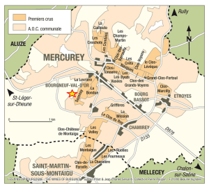 https://www.bourgogne-wines.com/our-wines-our-terroir/all-bourgogne-wines/mercurey,2459,9254.html?&args=Y29tcF9pZD0xNDUyJmFjdGlvbj12aWV3RmljaGUmaWQ9MzQ4Jnw%3D