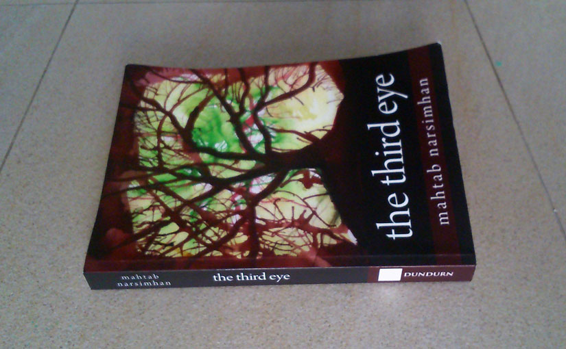 The Third Eye by Mahtab Narsimhan