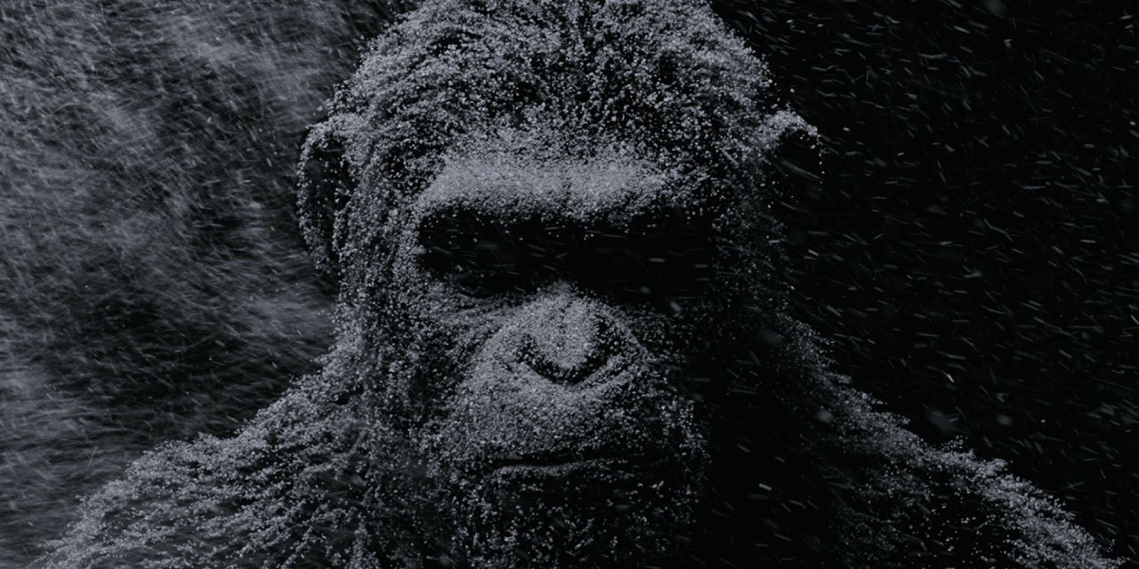 Trailer Tease For WAR FOR THE PLANET OF THE APES; Plus Caesar On Caesars Palace