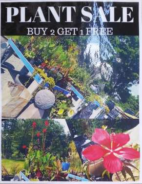 plant sale sign aug 2015
