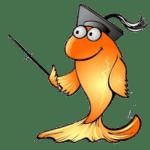 DIY Pond Care Tips
