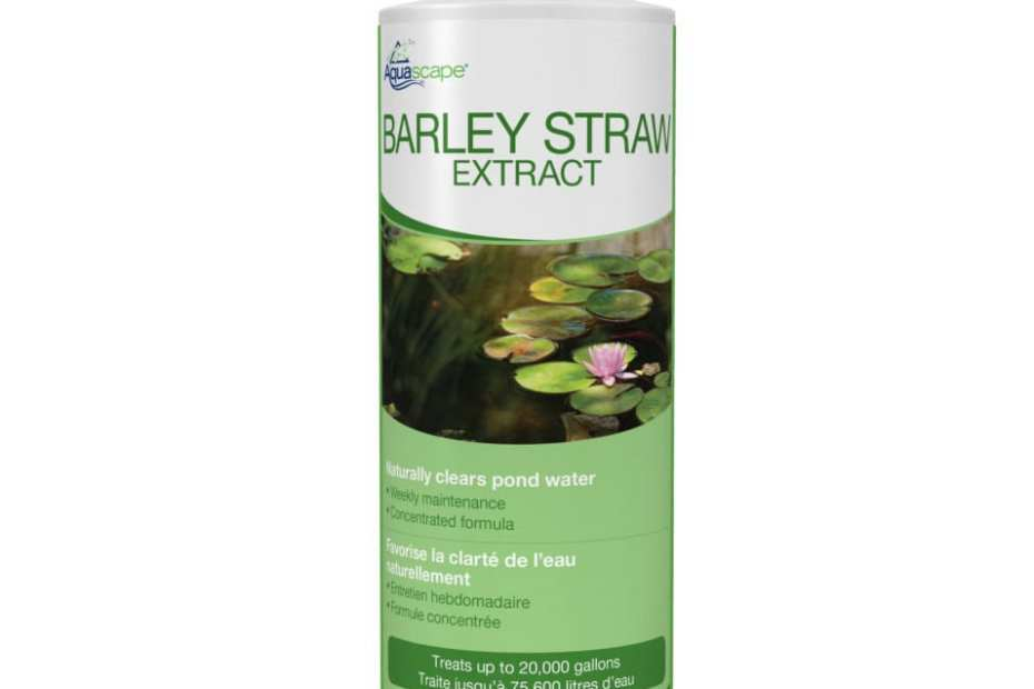 Barley Straw Extract
