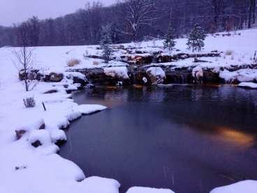 Swim Pond in Winter
